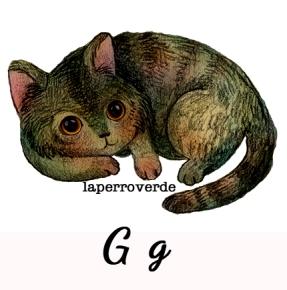 g es de gato